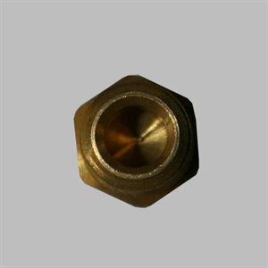 Schneider 1 / 8 MPT Plug
